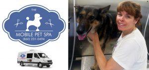 Dog Grooming in West Hartford